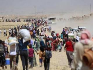 На севере Ирака скопилось 400 тыс. беженцев-езидов
