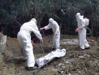 ВОЗ призвала мусульман не омывать тела умерших от Эболы