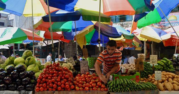 В российских магазинах появятся овощи и фрукты из Палестины высокого качества