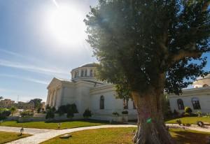 РФ создаст в Палестине археологический музей под открытым небом