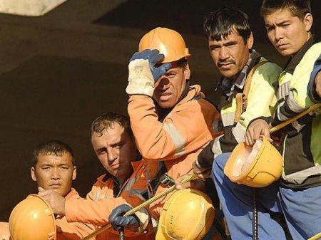 Штраф за использование нелегальной рабочей силы составит от 6 до 15 т.р.