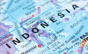 Россия и Индонезия нацелились на стратегическое сотрудничество