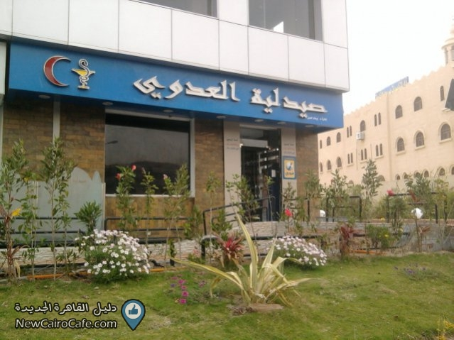 Чем лечиться в Египте? Египетское здравоохранение. Часть 3