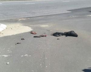 Имам: метатели свинины в мечети стараются зря