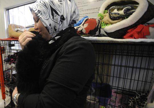 Мусульманка гладит кошку в приюте для бездомных животных