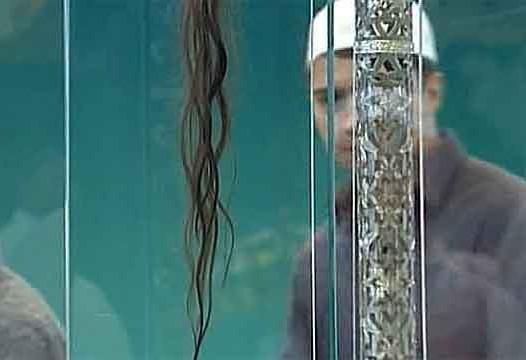Москва станет хранительницей волоса пророка Мухаммада