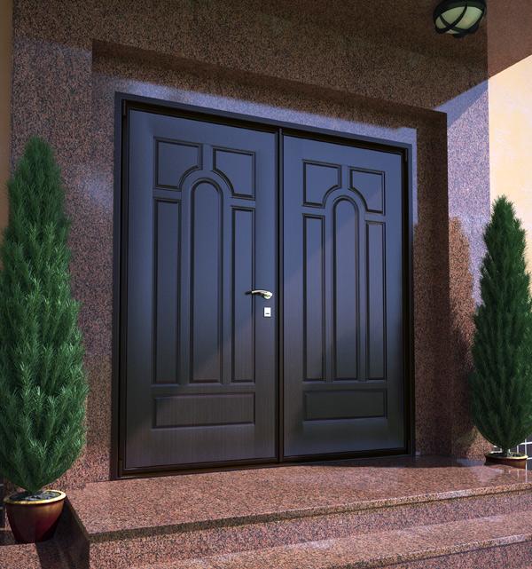 нестандартная двухстворчатая железная дверь в квартиру