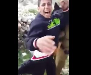 Израильский политик в восторге от видео с травлей собак на палестинского ребенка