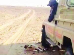 Саудовский Совет Шуры призвал карать живодеров