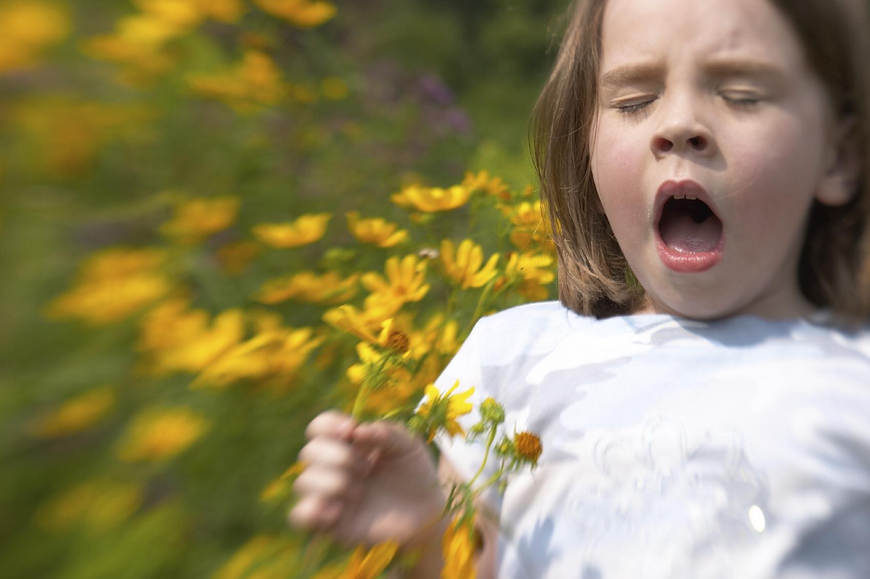Аллергия: основная информация о ней