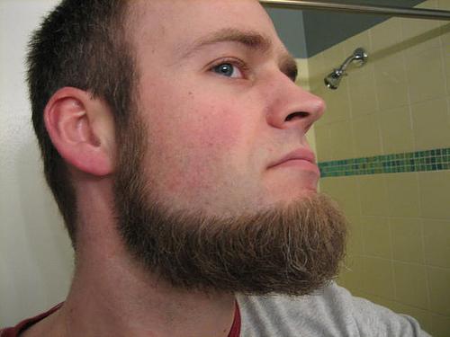фото мусульманская борода