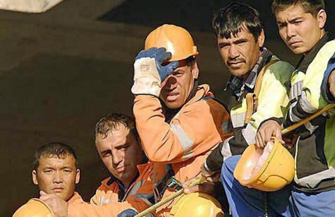 Страховые компании наживаются на мигрантах