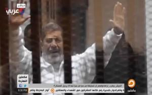 Совет Европы обратился с ходатайством к муфтию Египта