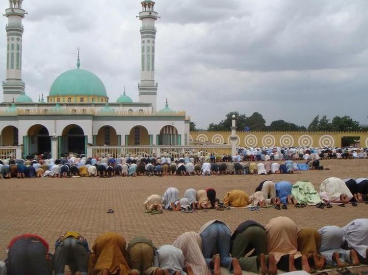 Власти Камеруна закрыли все мечети и медресе
