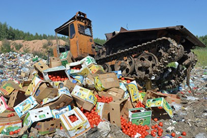 Россияне про убийство еды: «эти люди из параллельной реальности»
