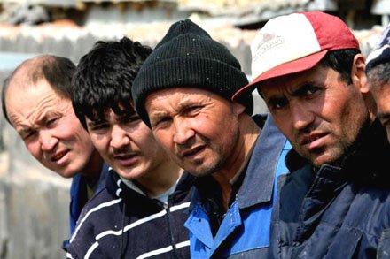 Дождутся ли мигранты своих денег от уважаемой фирмы