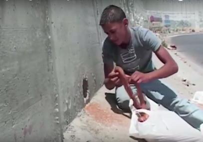 «Дорога жизни» – доставка хлеба в блокадную Палестину (ВИДЕО)