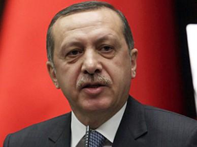 Эрдоган узнал о планах России в Сирии