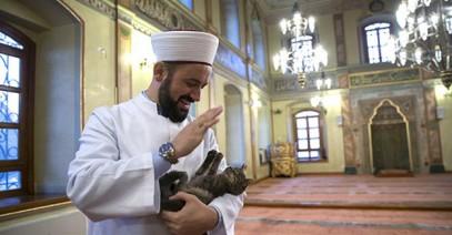 Имам растрогал верующих любовью к кошкам (ФОТО)