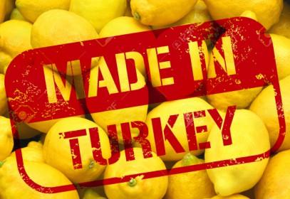 Турция нашла выход из санкционного тупика