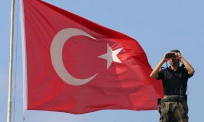 Турция отчиталась по ликвидированным в Сирии игиловцам