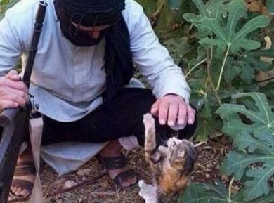 ИГИЛ вербует боевиков с помощью котят — как?