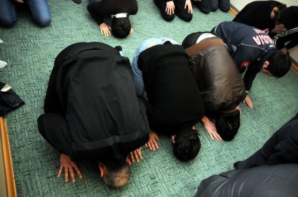 Суд Грозного защитил чувства мусульман от оскорбления на Lurkmore