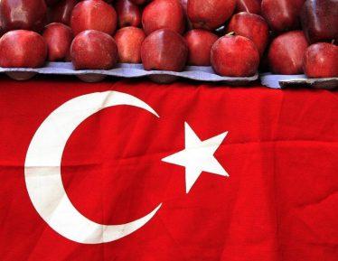 Чиновники намекнули, когда ждать возвращения турецких овощей и фруктов