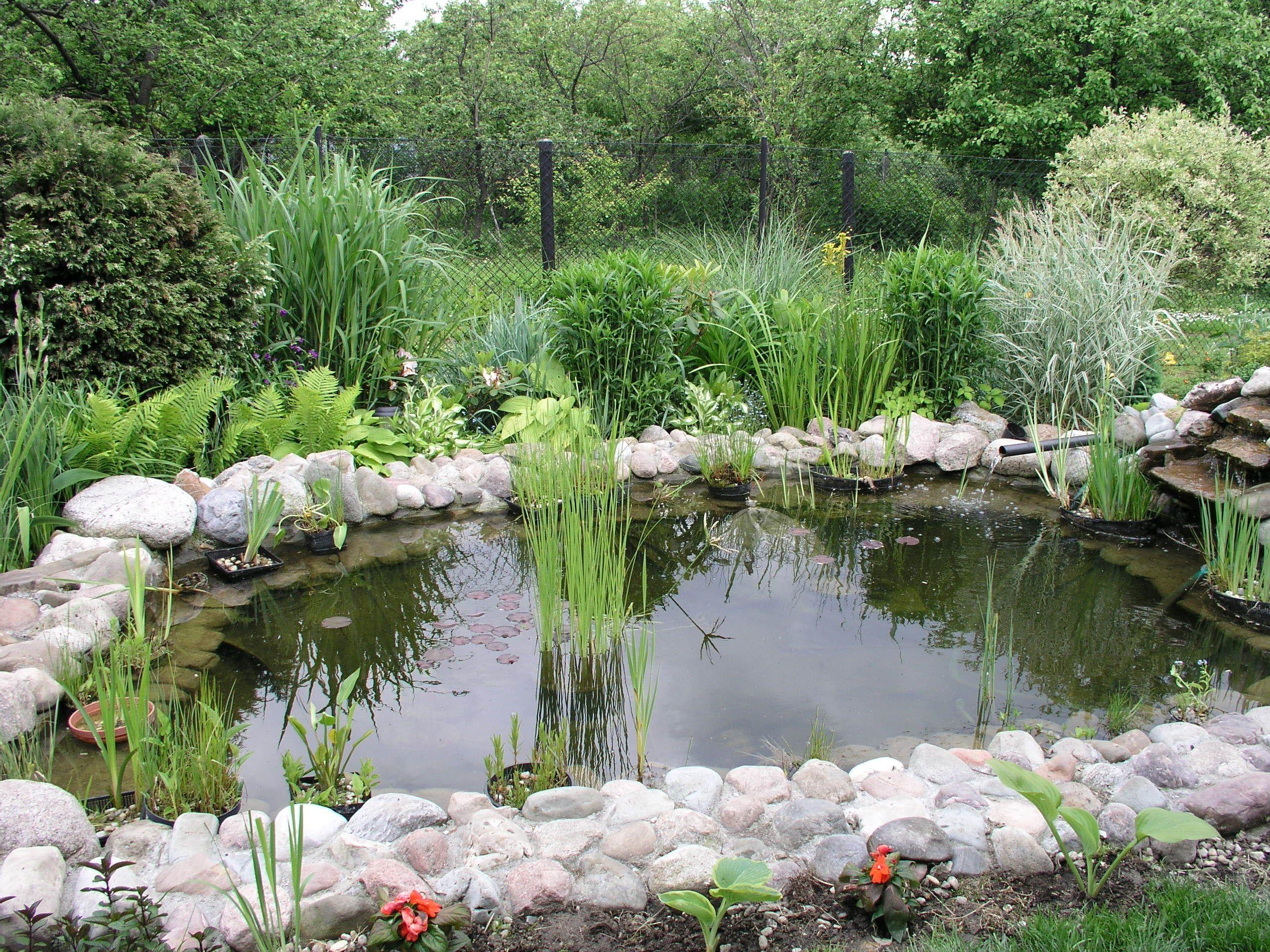 Нюансы выбора насоса для пруда и фонтана
