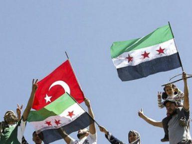Эксперты назвали истинную цель турецкой операции в Сирии