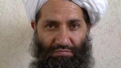 Талибы займутся экологическим джихадом