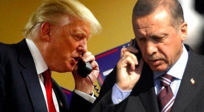 Трамп и Эрдоган договорились о совместных действиях в этом направлении