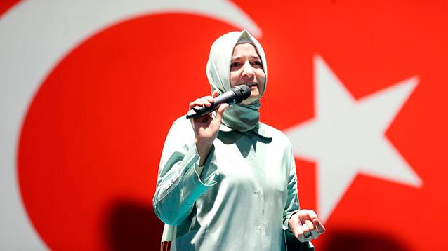 Европейская демократия трещит от турецкой пассионарности