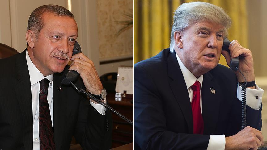 Трамп поздравил Эрдогана и обсудил вопросы Сирии