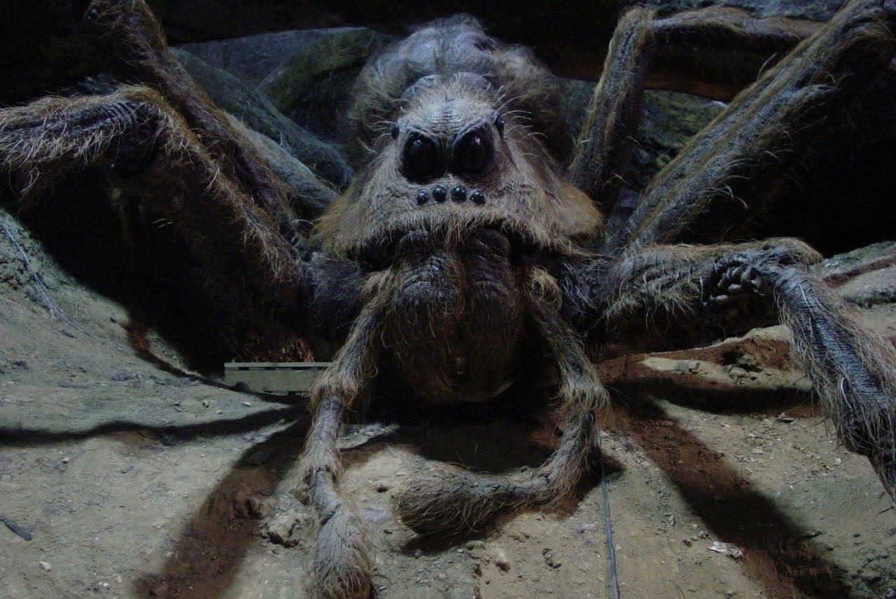 Кабардино-Балкарию взбудоражила новость о гигантских пауках-людоедах