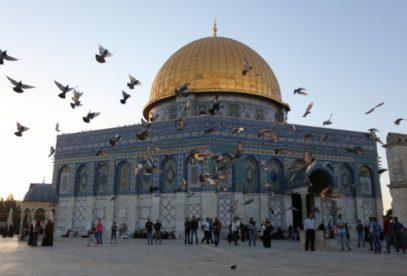 Муфтий Иерусалима сделал долгожданное заявление по ситуации вокруг Аль-Аксы (ВИДЕО)