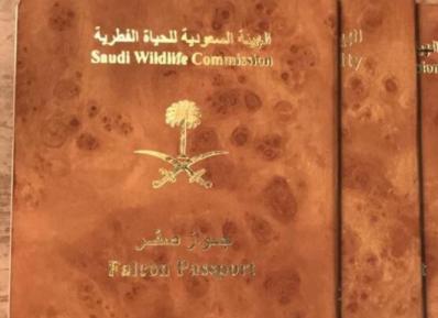 Нечеловеческие существа обязаны получать паспорта в Саудовской Аравии