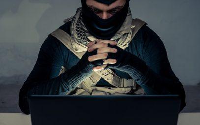 В Приморье иностранец сильно поплатился за киберджихад