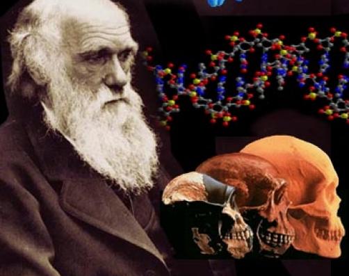 Гипотеза Дарвина стала основой антирелигиозных взглядов