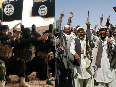 ИГИЛ и «Талибан» делят Афганистан
