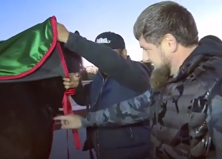 Рамзан Кадыров осматривает родимую вязь на шее скакуна