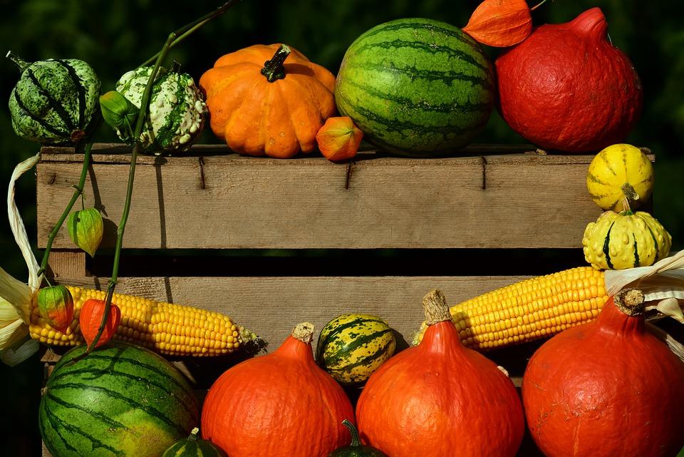 Заказ фруктов и овощей через Интернет: быстро и удобно