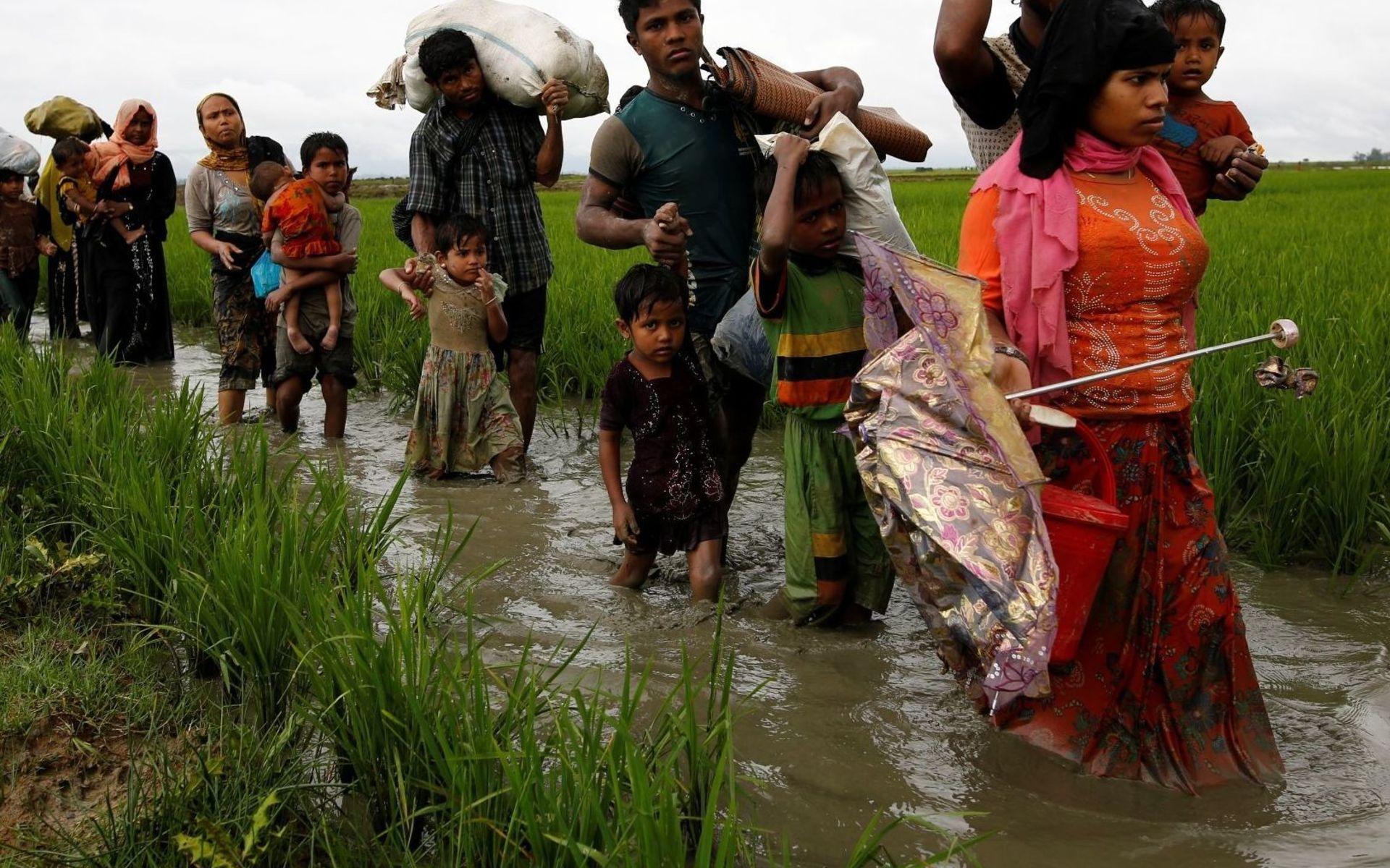 Рохинья спасаются от этнических чисток