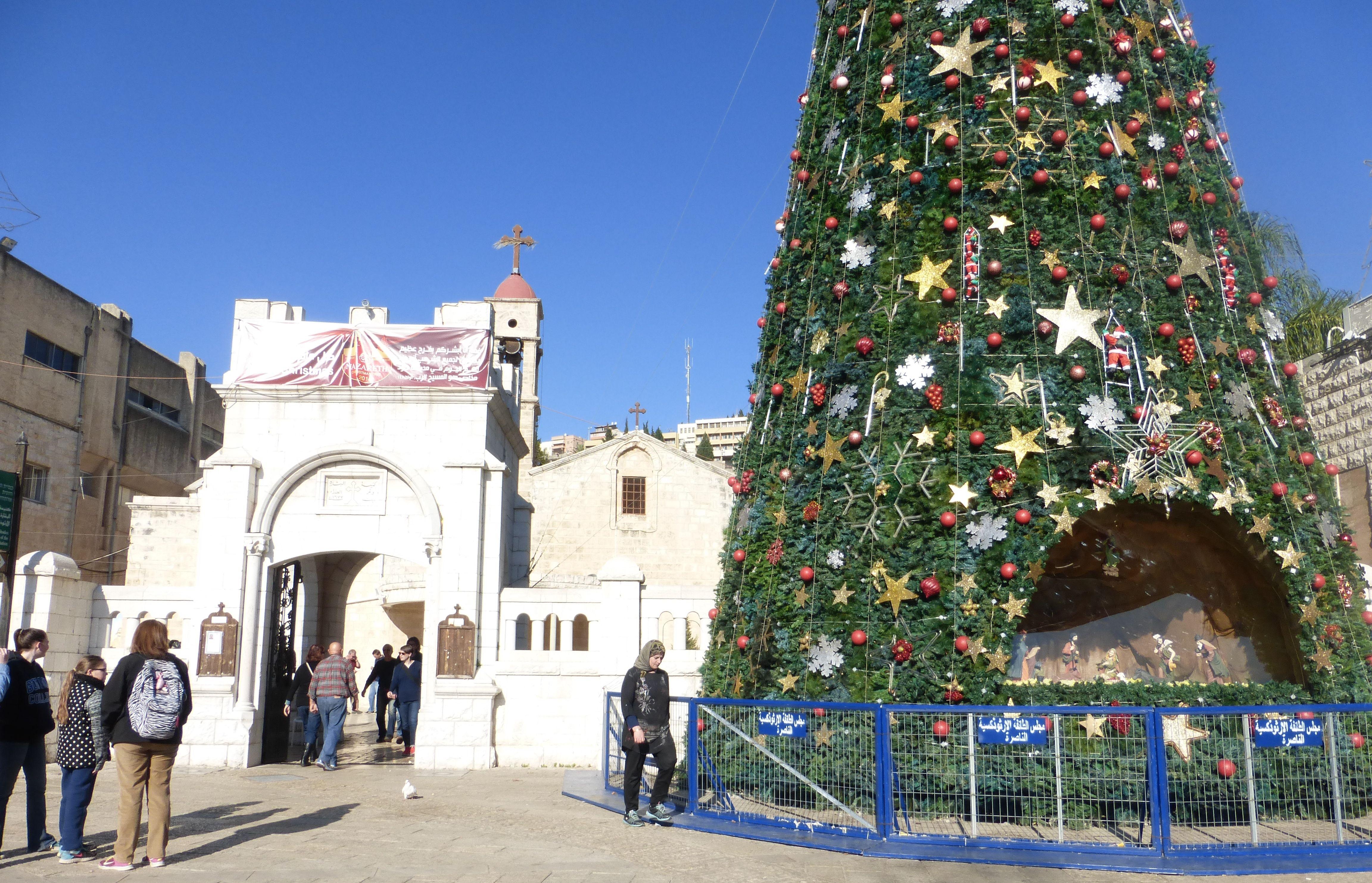 Рождественская ели в Назарете