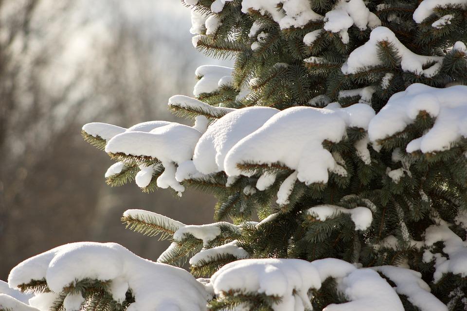 Что посмотреть в Казани в зимний сезон?