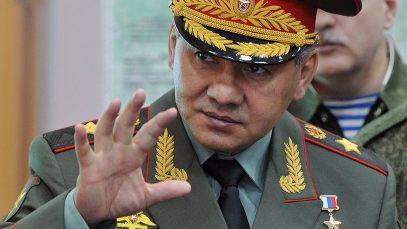 Шойгу рассказал о новых оружейных контрактах России с исламскими странами