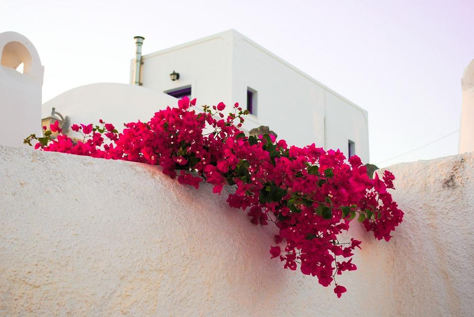 Достоинства аренды виллы для отдыха в Греции