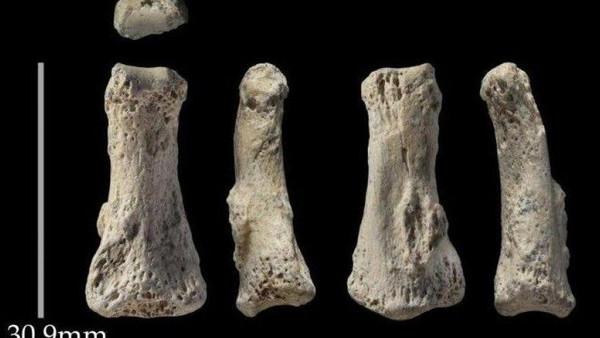 Древняя находка в Саудовской Аравии изменила представление о развитии человечества