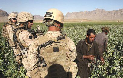 Шойгу рассказал, как создается террористический кулак в Афганистане