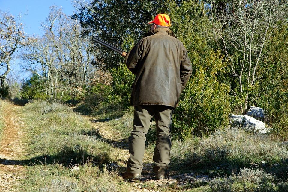 Особенности выбора ружей для профессиональной охоты